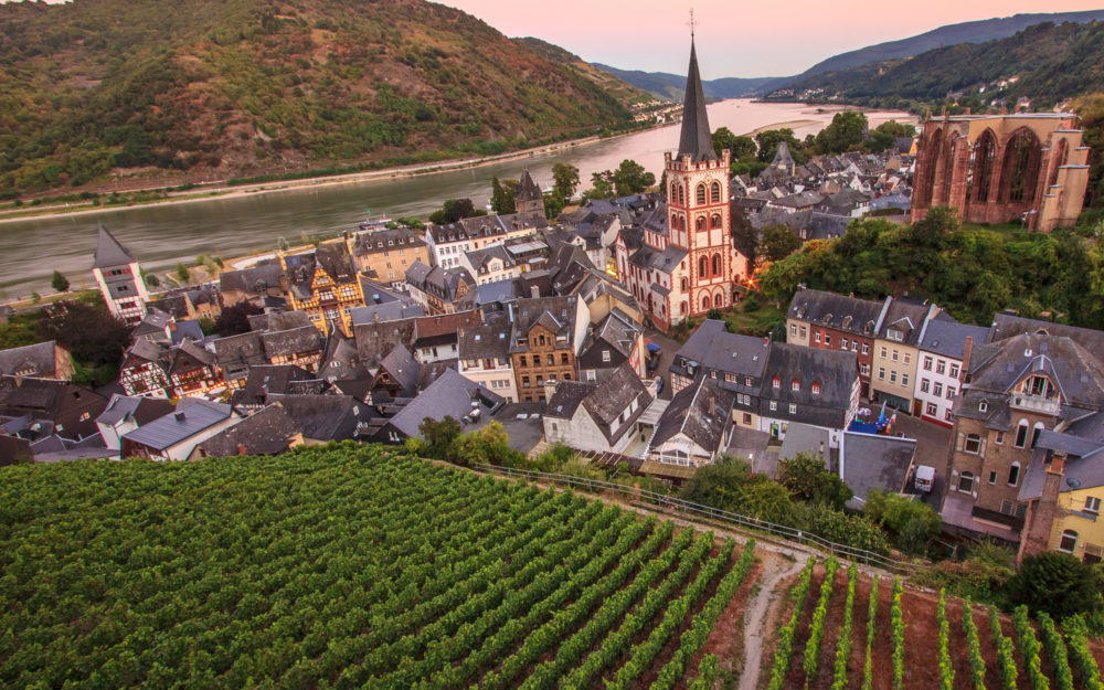 Stadt und Weinberge am Rhein bei Sonnenuntergang