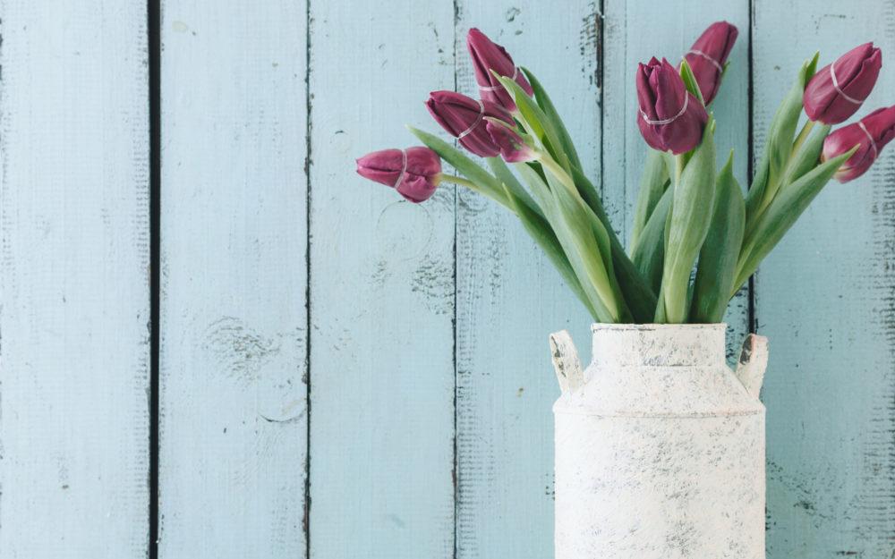 Tulpen als Deko in einer alten Milchkanne